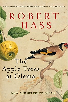 The Apple Trees at Olema By Hass, Robert